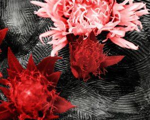 Red Current – Custom Art
